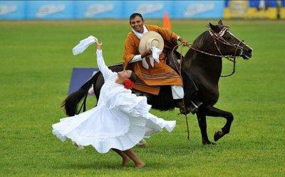 caballos_en_accion1